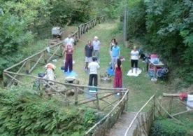 meditazione e presenza in bosco